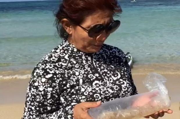 Penyelundupan Benih Lobster di Era Susi Pudjiastuti Dibongkar Effendi Gazali