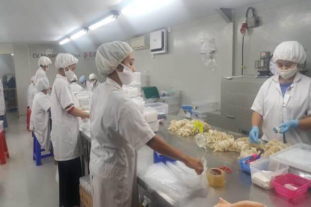 Sarang Burung Walet RI Laris di Mancanegara, Diburu China dan 23 Negara Lain