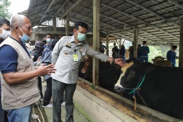 Komisi IV Ancam Mentan Jika Ngotot dengan Program Desa Sapi