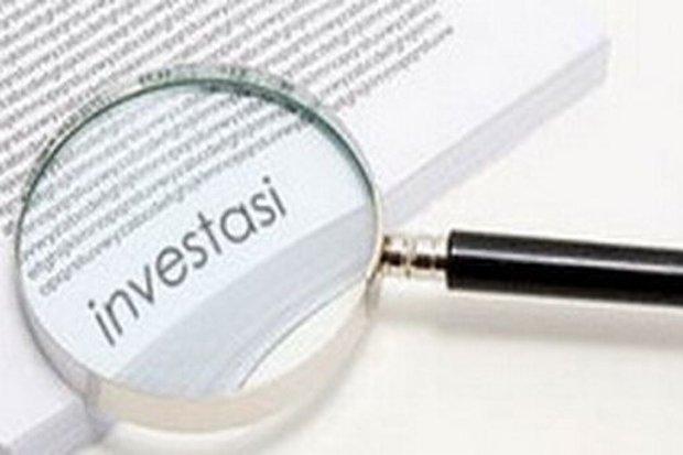 Tesla Pilih India, Apindo: Benahi Mata Rantai Investasi!