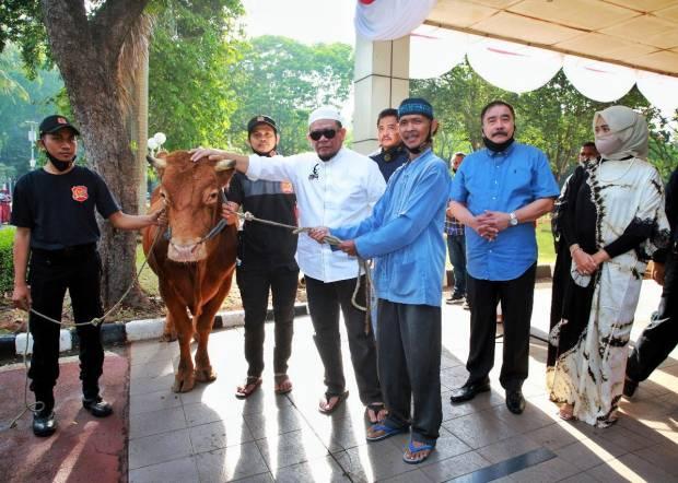 Soal Impor Daging Jelang Ramadhan, Ketua DPD Ingatkan Pasar Tak Naikkan Harga