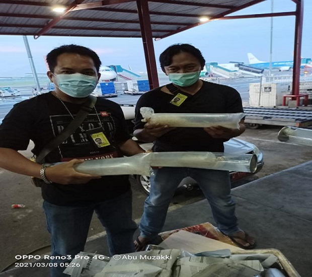 Lagi, KKP Gagalkan Penyelundupan 29.250 Benih Lobster Berkedok Paket Makanan