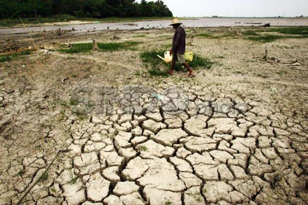 Hadapi Perubahan Iklim, Sri Mulyani Guyur Dana Khusus untuk Daerah