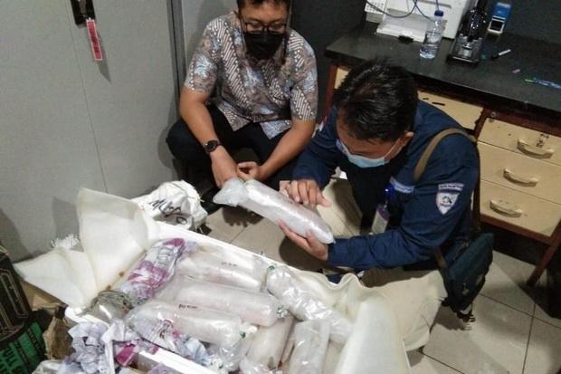 Penyelundupan 22.230 Benih Lobster ke Singapura Digagalkan, BKIPM: Bukti Kita Tidak Main-main