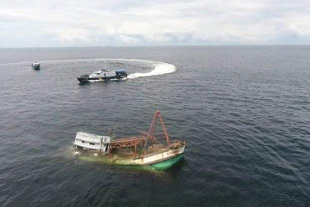 Hiu Macan Tutul Gagalkan Kapal Vietnam Pencoleng Cumi