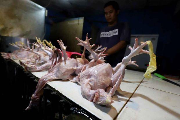 Dipicu Kenaikan Harga Daging, Inflasi April Diperkirakan 0,17%