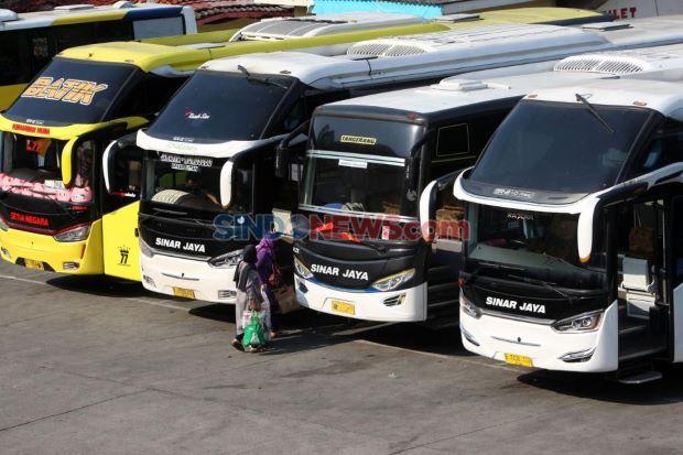 PNS Boleh Mudik, Asalkan Pakai Bus Ini