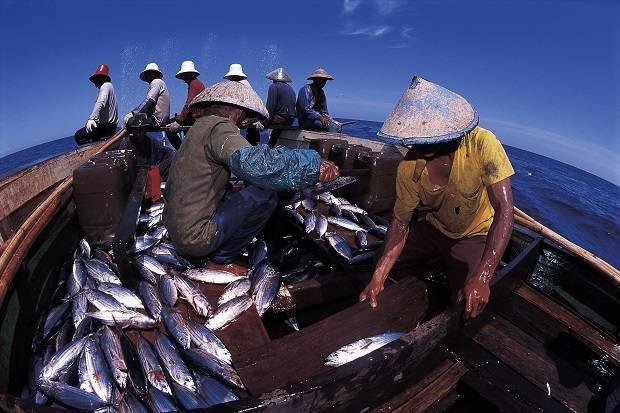 Penyaluran KUR Sektor Kelautan dan Perikanan Tembus Rp1,71 Triliun