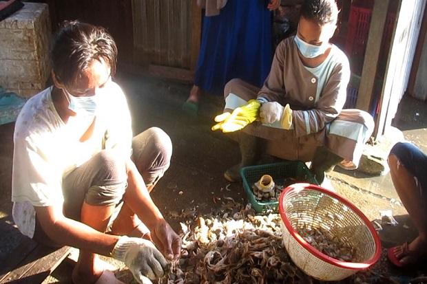 Dililit Kemiskinan, Ibu 5 Anak di Medan Harus Banting Tulang Jadi Pengupas Kulit Kepiting