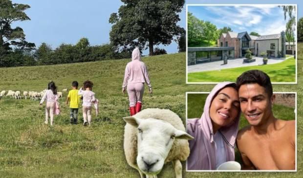 Lucu, Ronaldo dan Georgina Pindah Rumah gara-gara Suara Domba