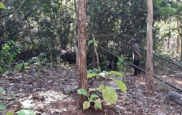 Bau Anyir Luweng Grubuk, Saksi Sejarah Penumpasan Ribuan Gerombolan PKI di Jogja