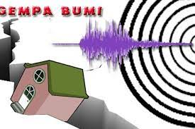 Gempa Tektonik M4.9 Guncang Sikka, Getaran Terasa Sampai Ende