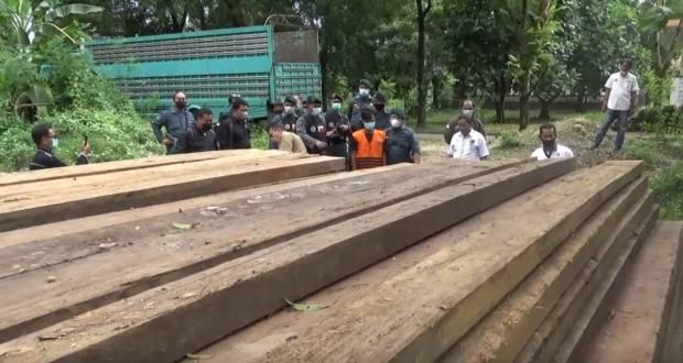 Selundupkan Ratusan Kayu Ilegal ke Sulsel, Pria Asal Sulteng Diamankan