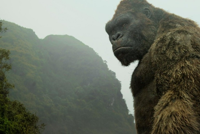 MonsterVerse Ungkap Kong Tinggalkan Skull Island akibat King Ghidorah